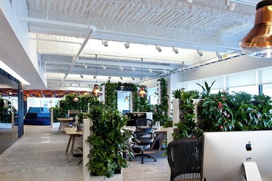 McCann Erickson Office Pictures