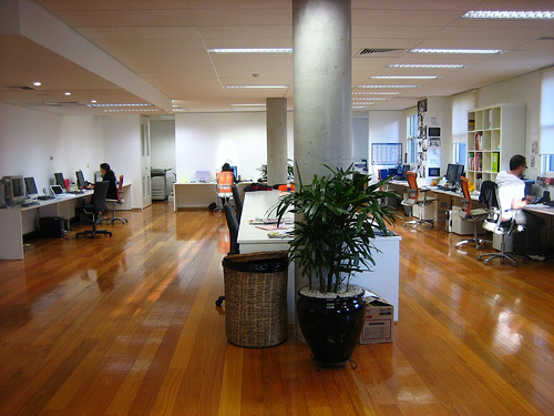 Reactive Sydney Studio Office